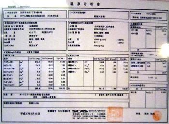 望海温泉分析書.jpg